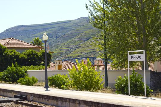 Douro2014 - 11