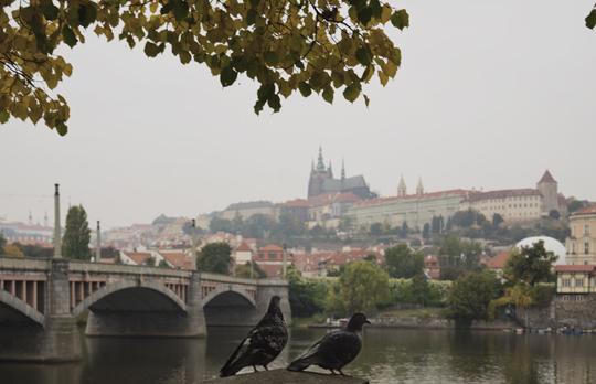 Praga - 54