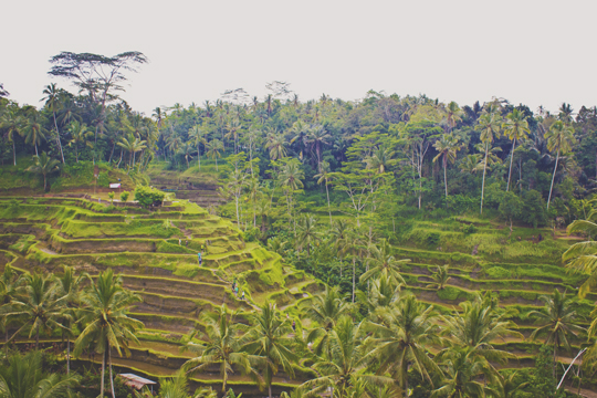 Bali - 70