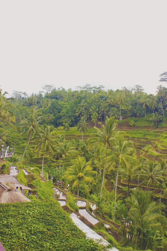 Bali - 71